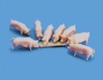 5108 Modelscene: OO ANIMALS  Pigs & Trough